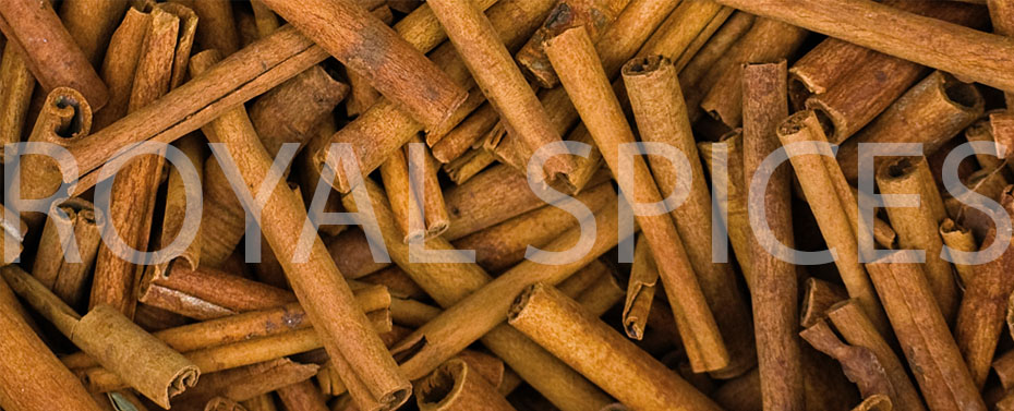 Chinese Cassia | Cassia Crop 2016 | Supplier | Exporter